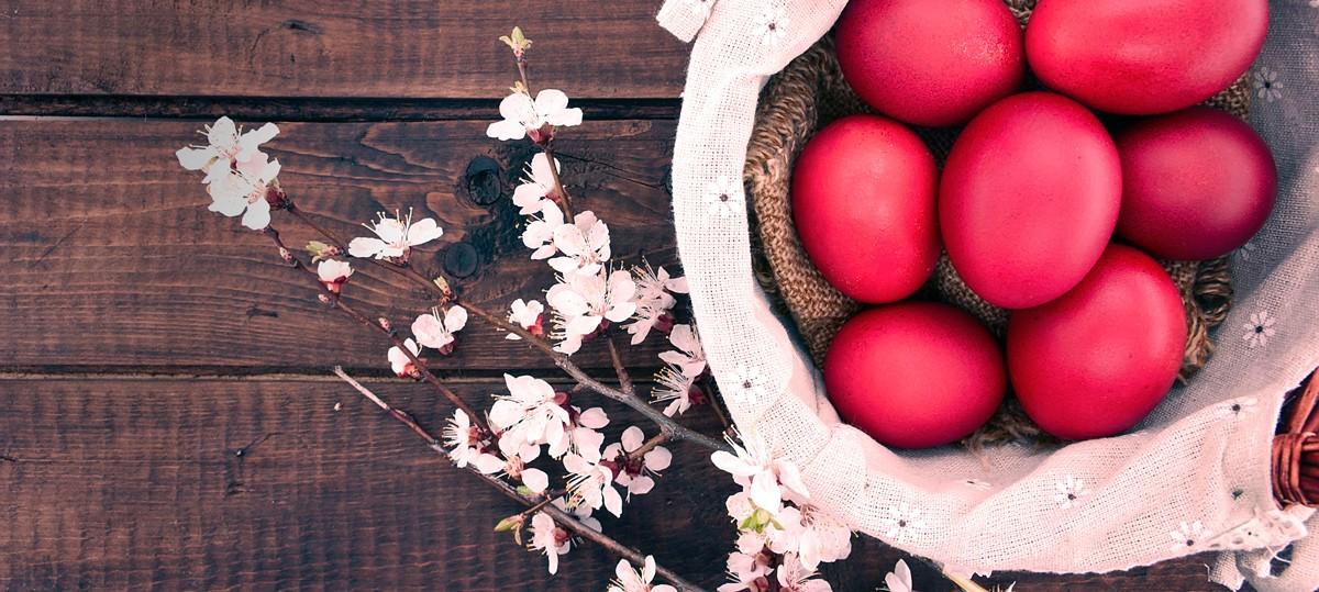 Пасха, яйцо, крашенка, весна, ветка, цветы
