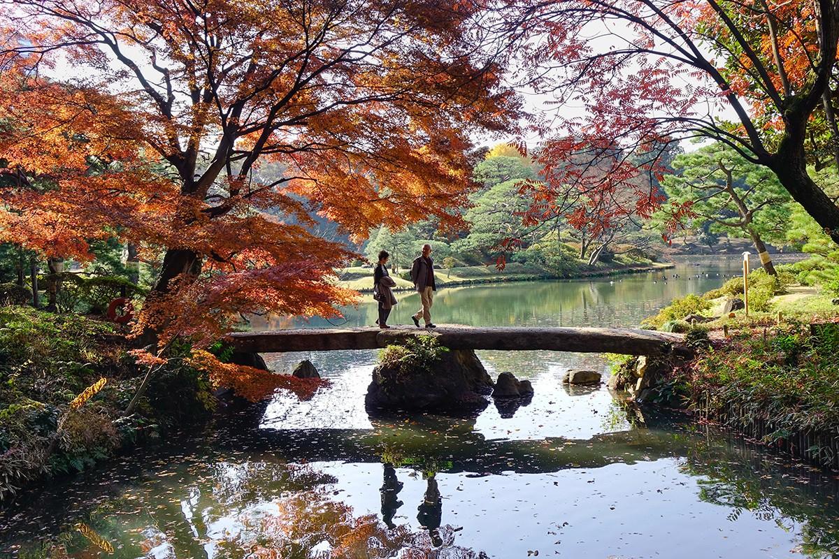 Парк Rikugien в Токио, Япония.