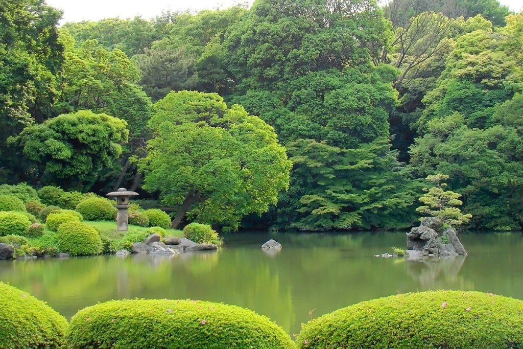 Rikugien, красивый японский сад в Токио, Япония