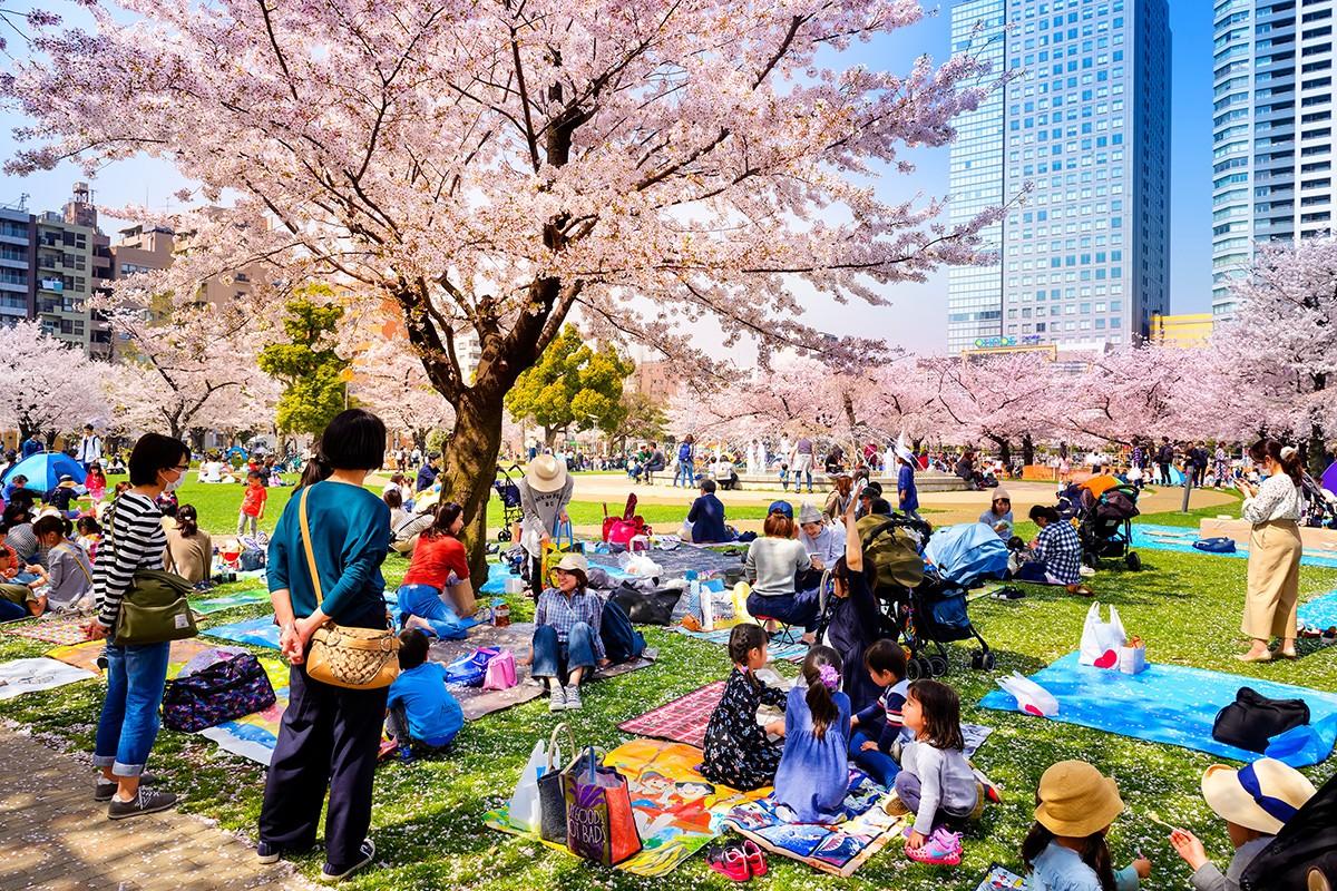 Парк Kinshi. Токио. Япония