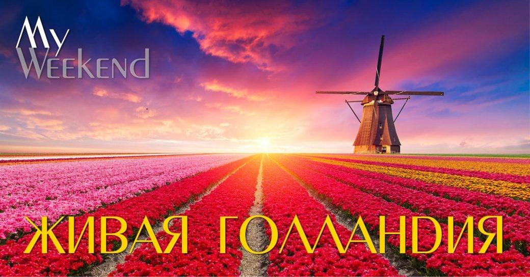 Живая Голландия