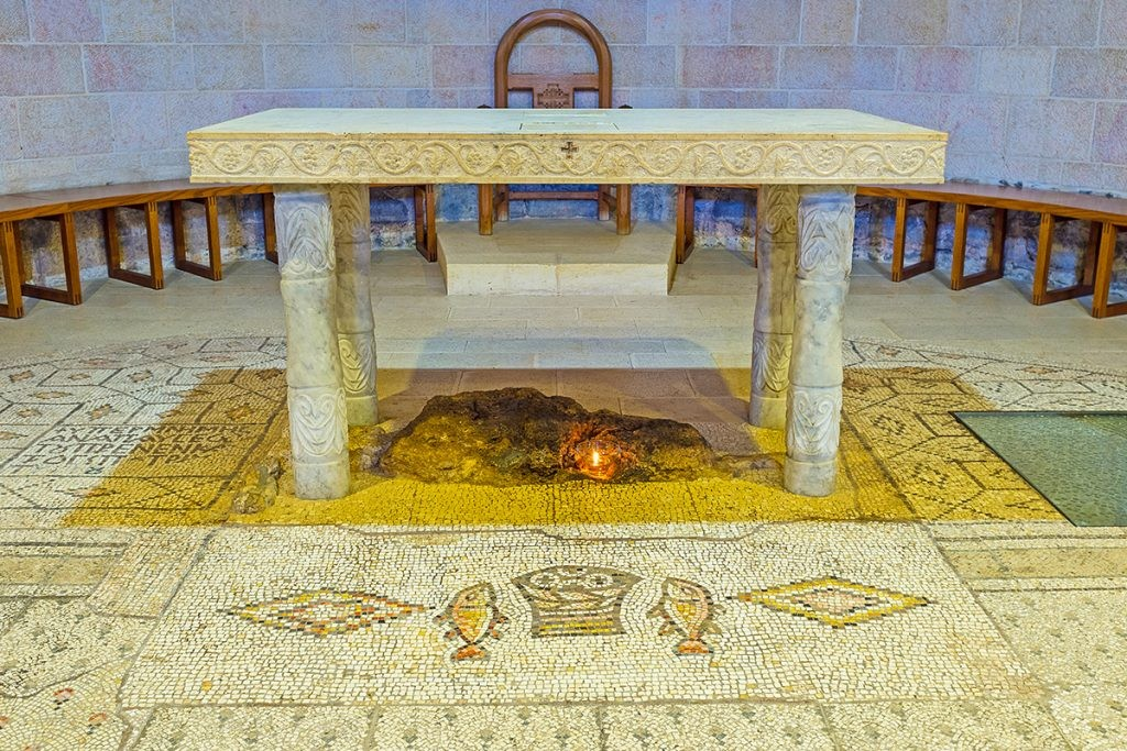 Табха, храм, мозайки, рыба