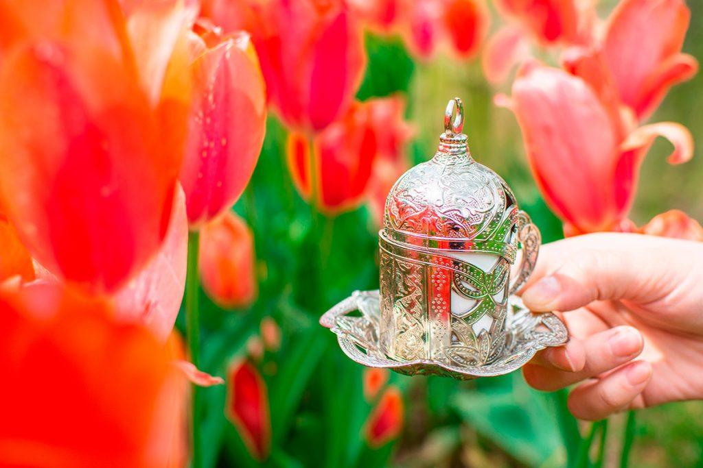 Турция, тюльпаны