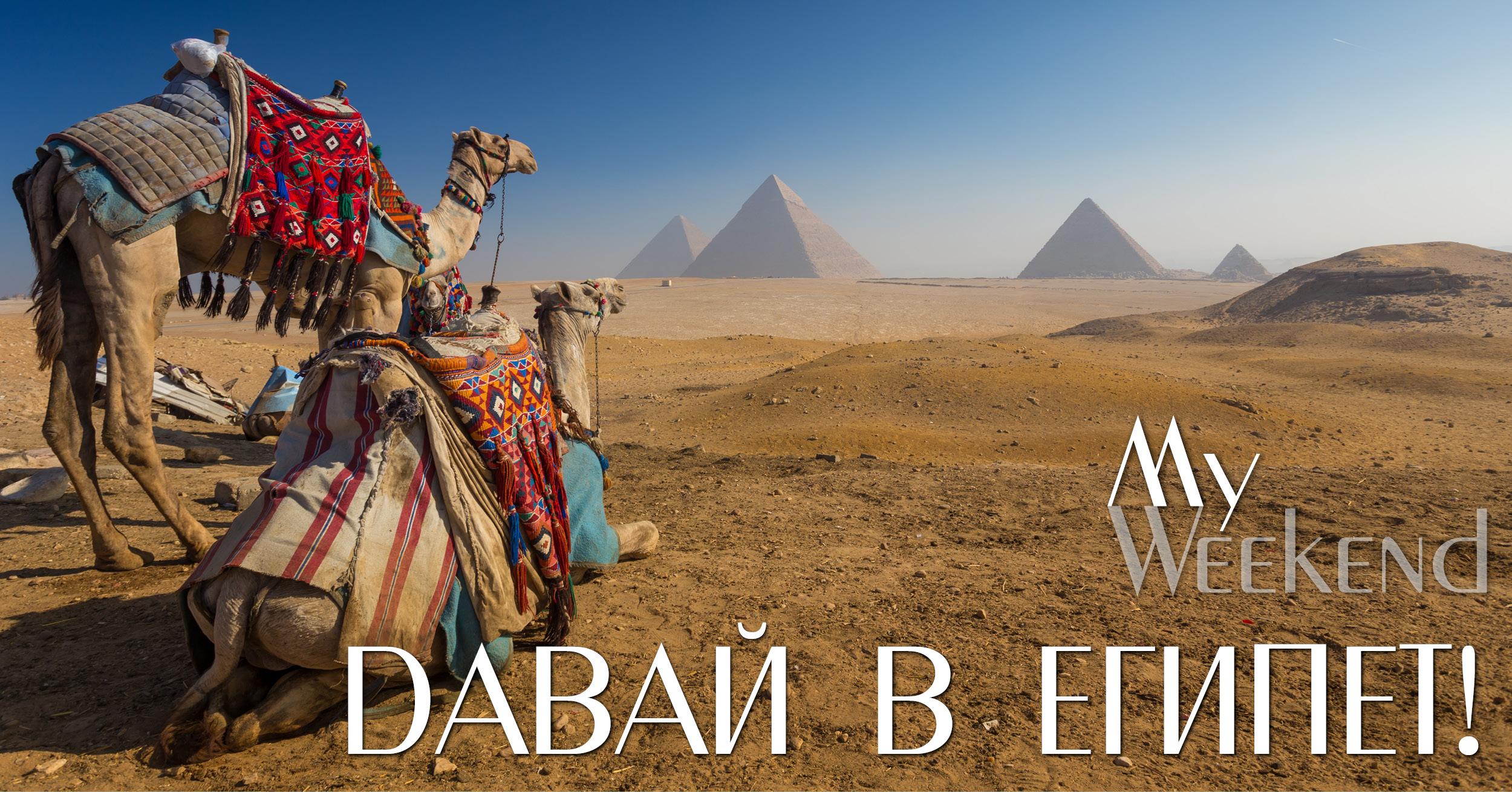 Египет, египетский номер