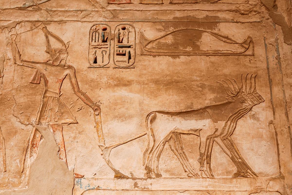 что помнить, Египет , история, факты
