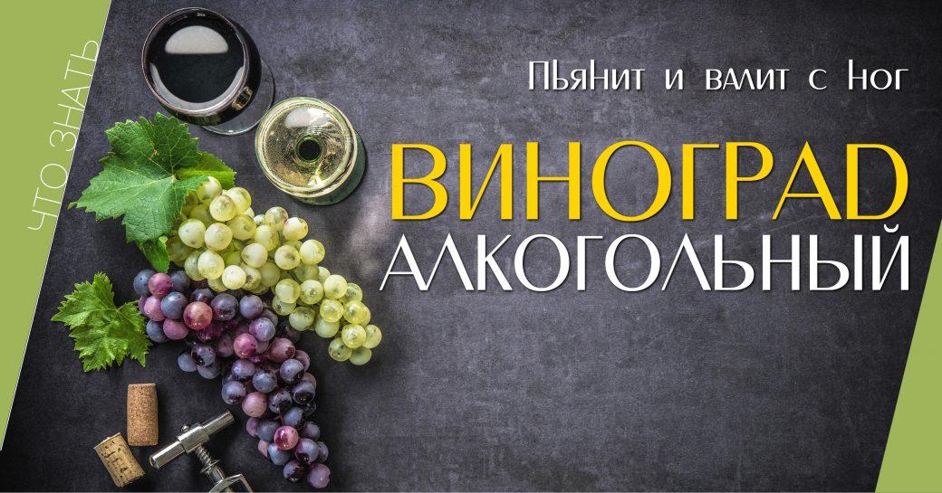 знать, напитки, алкоголь, виноград, история
