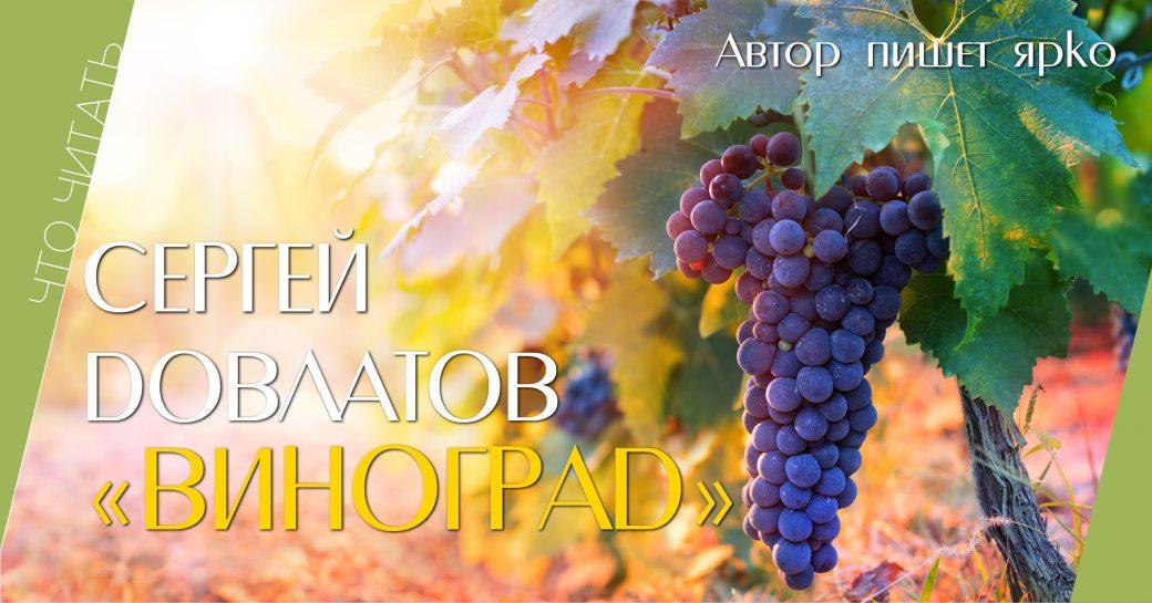 читать, книга, Довлатов, виноград