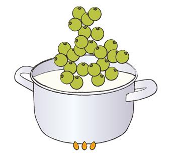виноград, рецепт, рисунок