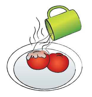 борщ, рецепт, помидор, рисунок