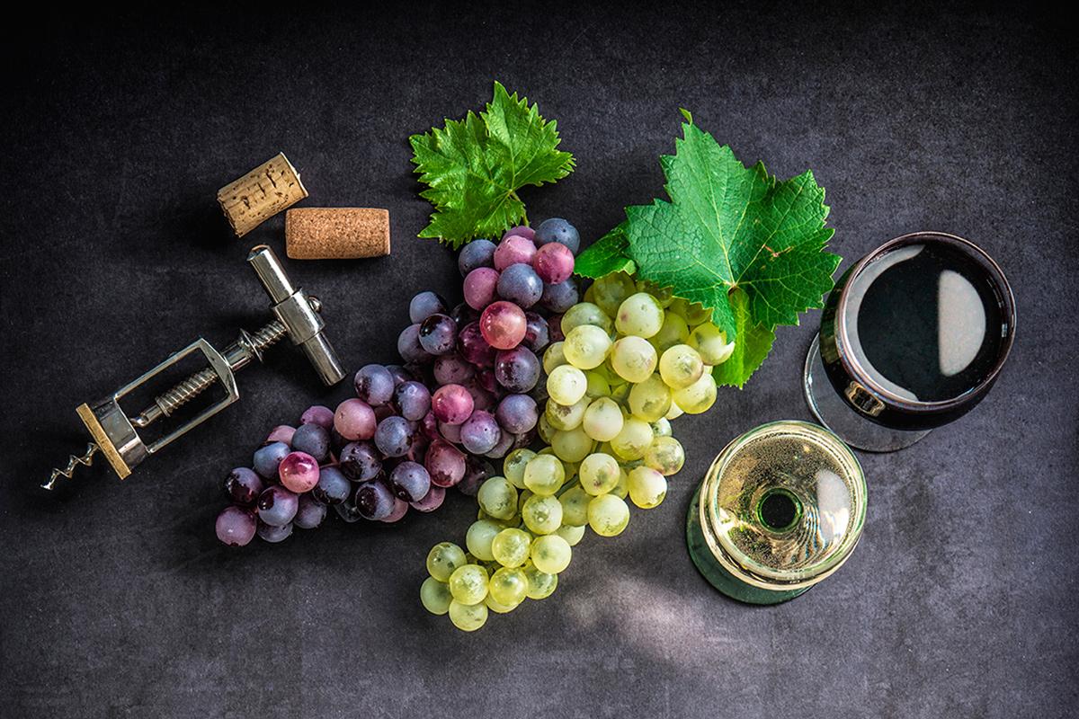 знать, напитки, вино, алкоголь виноград история