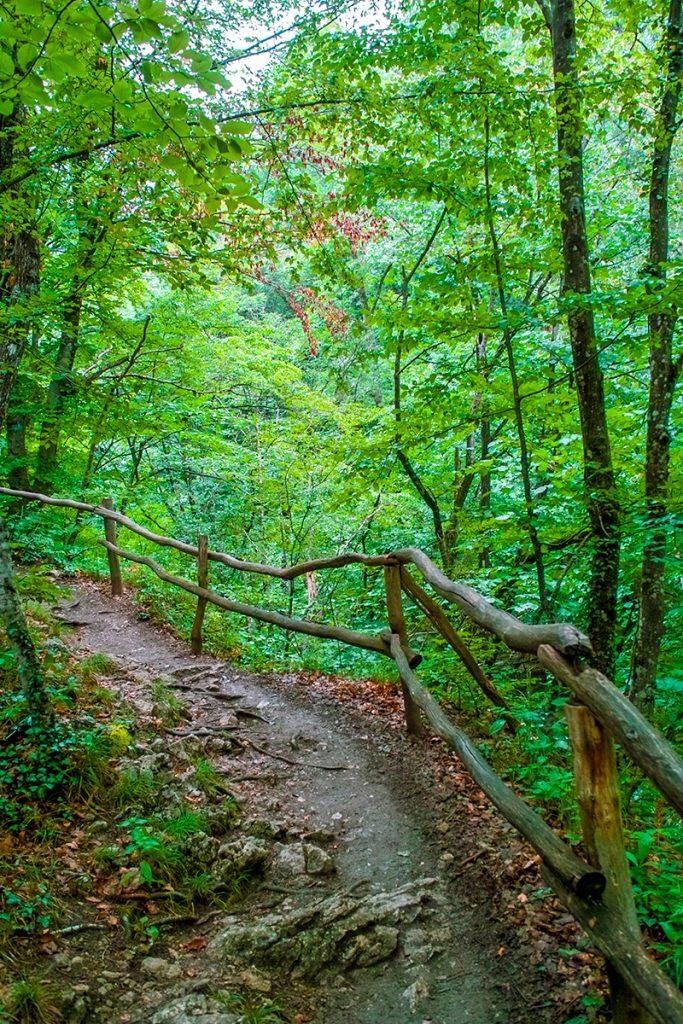 Крым, Украина, природа, горы, тропа, дорога, лес