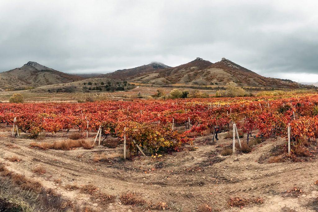 осень, Крым, море , виноградники, природа, гора, Украина