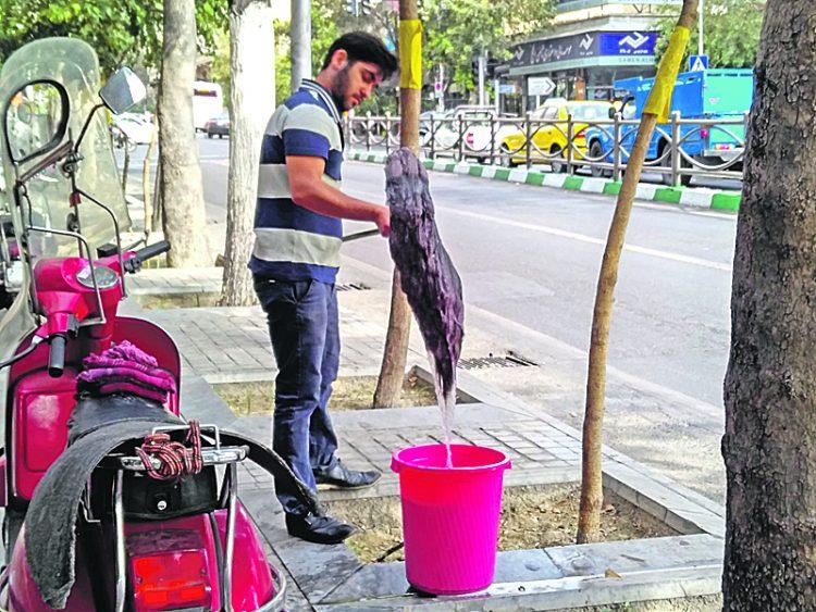Иран, чистота
