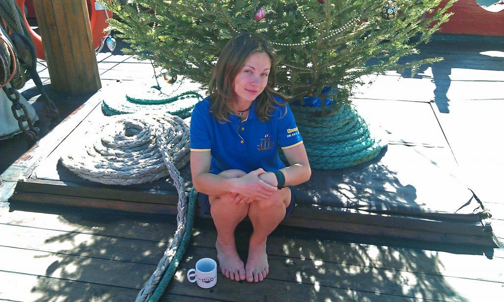 Канары, елка, Новый год