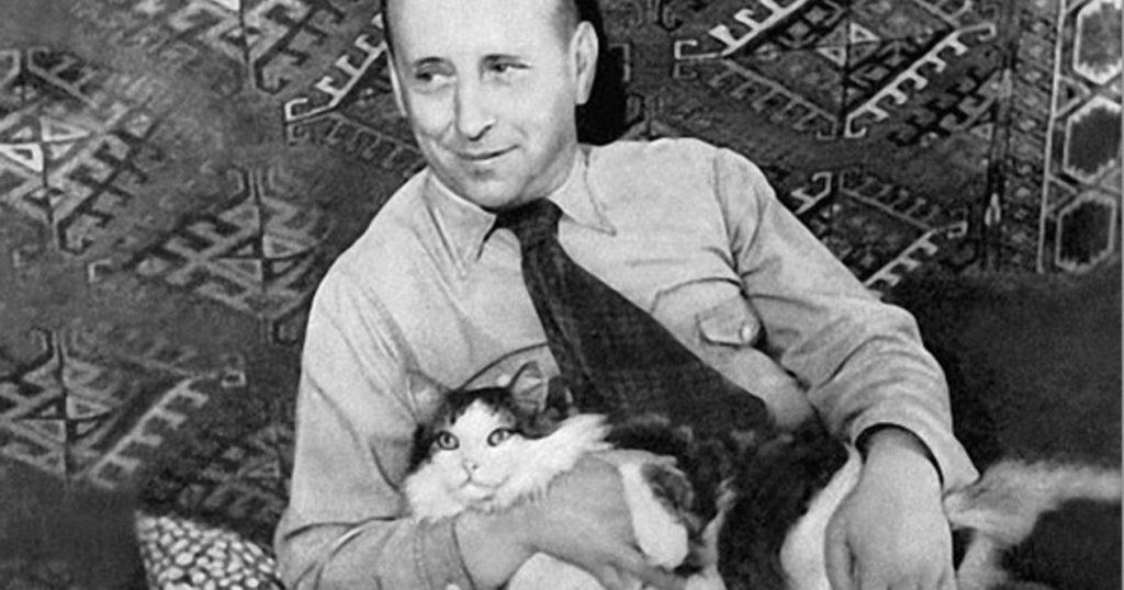 Шварц с котом