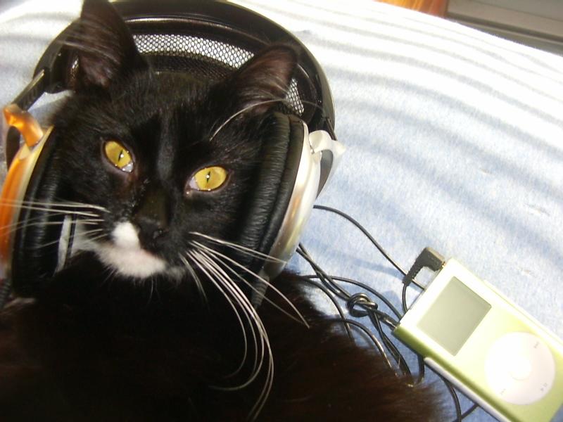 Где слушать музыку онлайн — 13 лучших сервисов