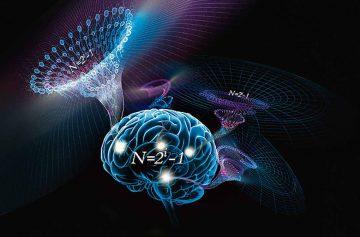наука, тайны мозга