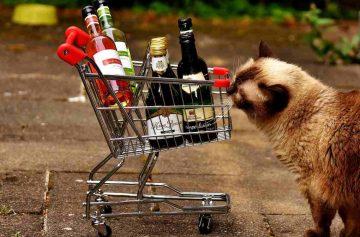 характер по алкоголю