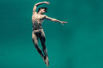 Сергей Полунин, балет, танцовщик, фуэте