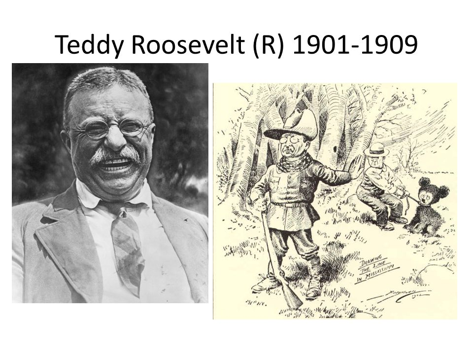 президент США, Teddy`s bear, Теодор Рузвельт, фишки дня