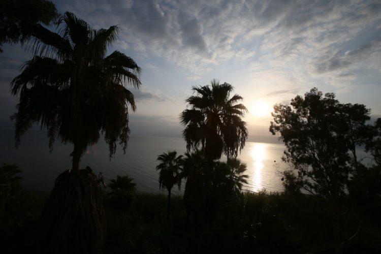 Святая Земля, Галилея, Галилейское море, пальмы, закат