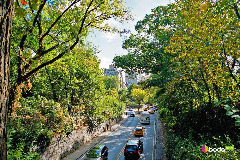 зеленый город, США, Нью-Йорк, что делать 7 дней в Нью-Йорке, лайфрид