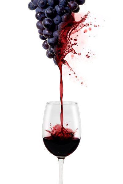 Тринадцатый Ангел, вино, виноград