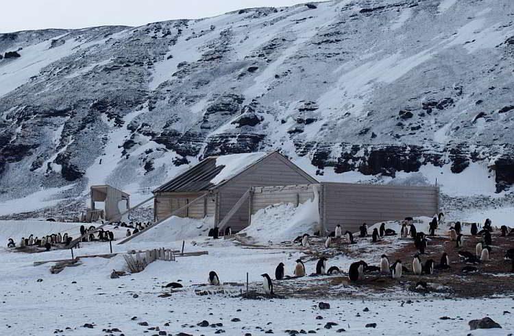 Новости археологии, На мысе Адэр в Восточной Антарктиде, Хижинаэкспедиции Карстена Борхгревинка