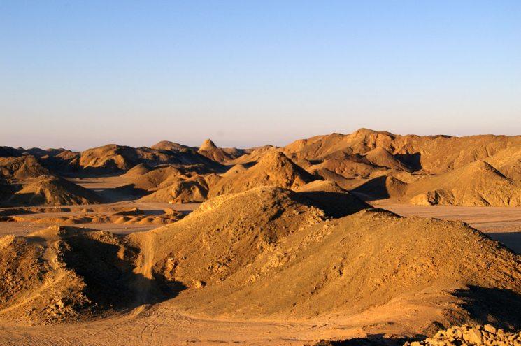 Фишки дня — 15 января, день посадки деревьев, Египет, Аравийская пустыня