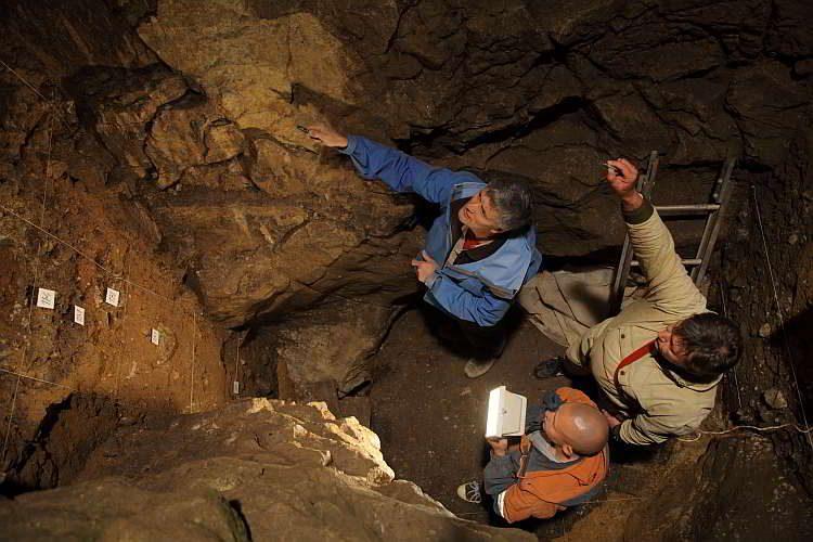 Новости археологии, пещера Денисова, ДНК, Алтай