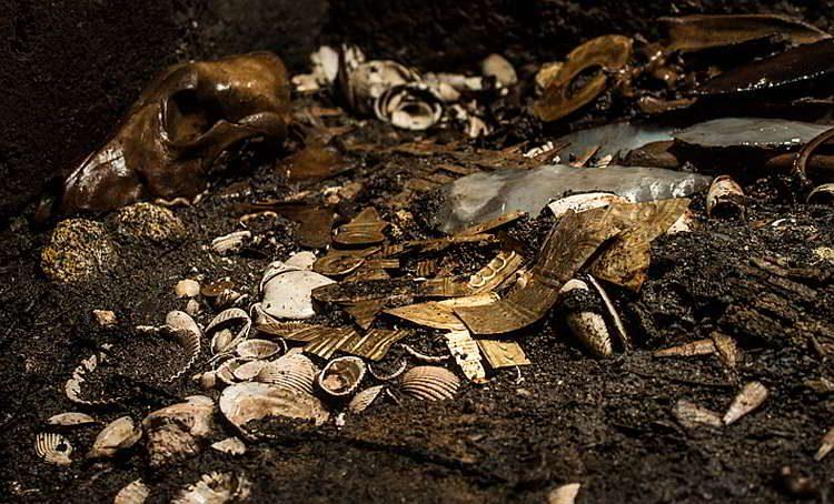 Новости археологии, золото, жертвенный волк