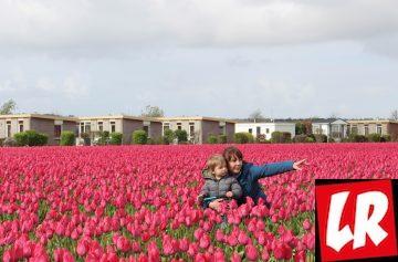Украинцы в мире, Голландия с ребенком