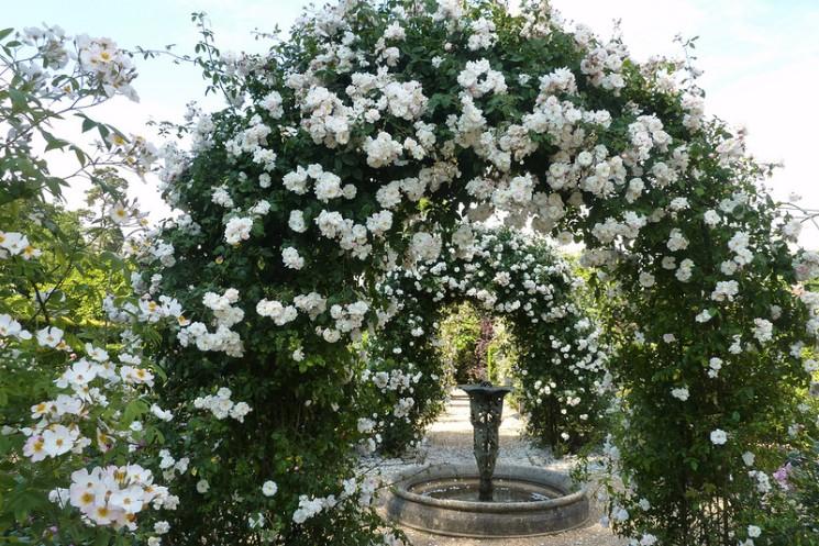 Фишки дня - 5 марта, Спента Армаити, праздники зороастризма