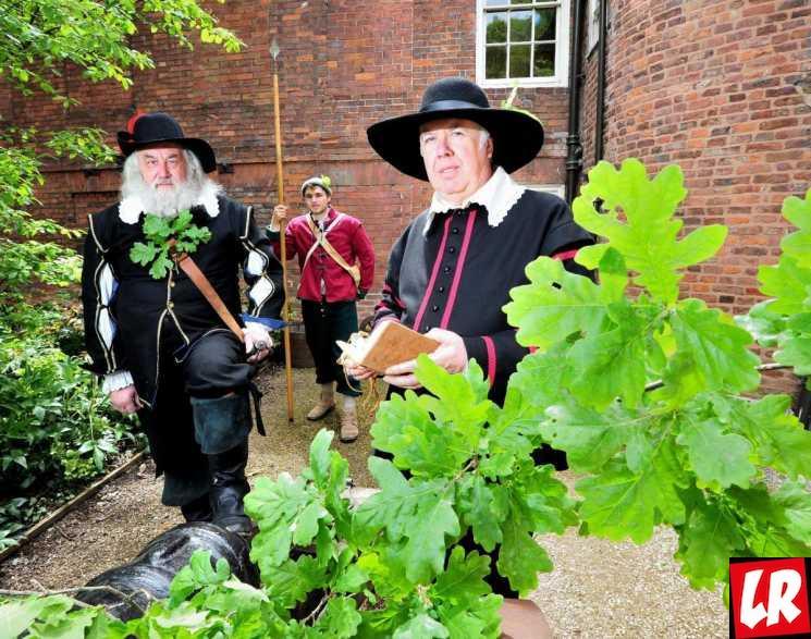 фишки дня - 29 мая, День королевского дуба, праздники Великобритании