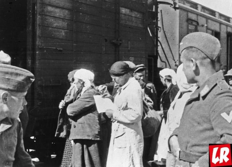 война, немцы, вторая мировая