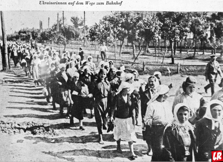 Освенцим и жизнь – интервью с выжившей узницей Анастасией Гулей
