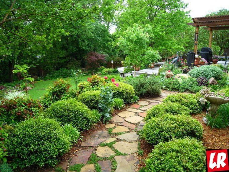Сад в скандинавском стиле, сад, ландшафт