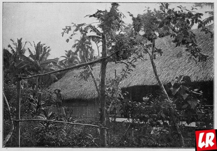 Гоген, дом на Таити