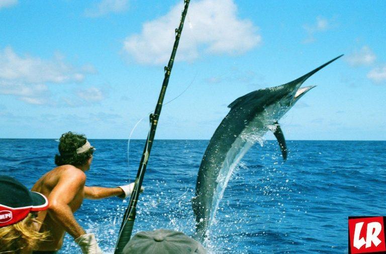 фишки дня, День рыбака, рыбалка