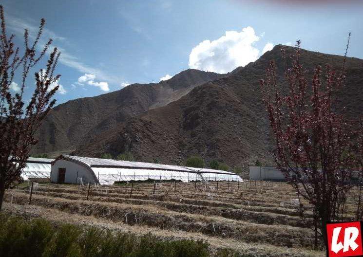 Лхаса, Тибет, комплекс Четыре сезона