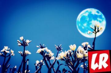 лунный календарь, магнитные бури, лето