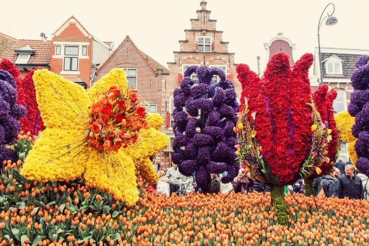 фишки дня - 1 сентября, парад цветов Аалсмеер, парад цветов Голландия