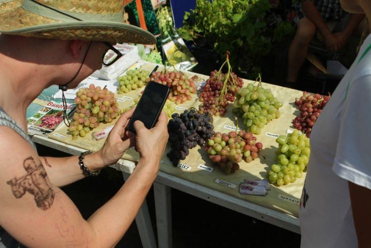 Сорочинская ярмарка, виноград