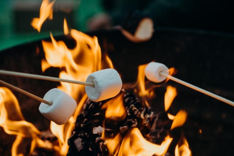 фишки дня - 30 августа, День жареного маршмеллоу