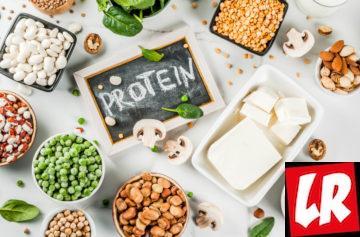 Protein, протеины, белок