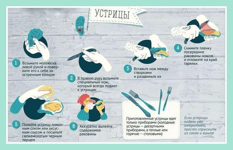 устрицы, как открывать устрицы, как правильно есть устрицы