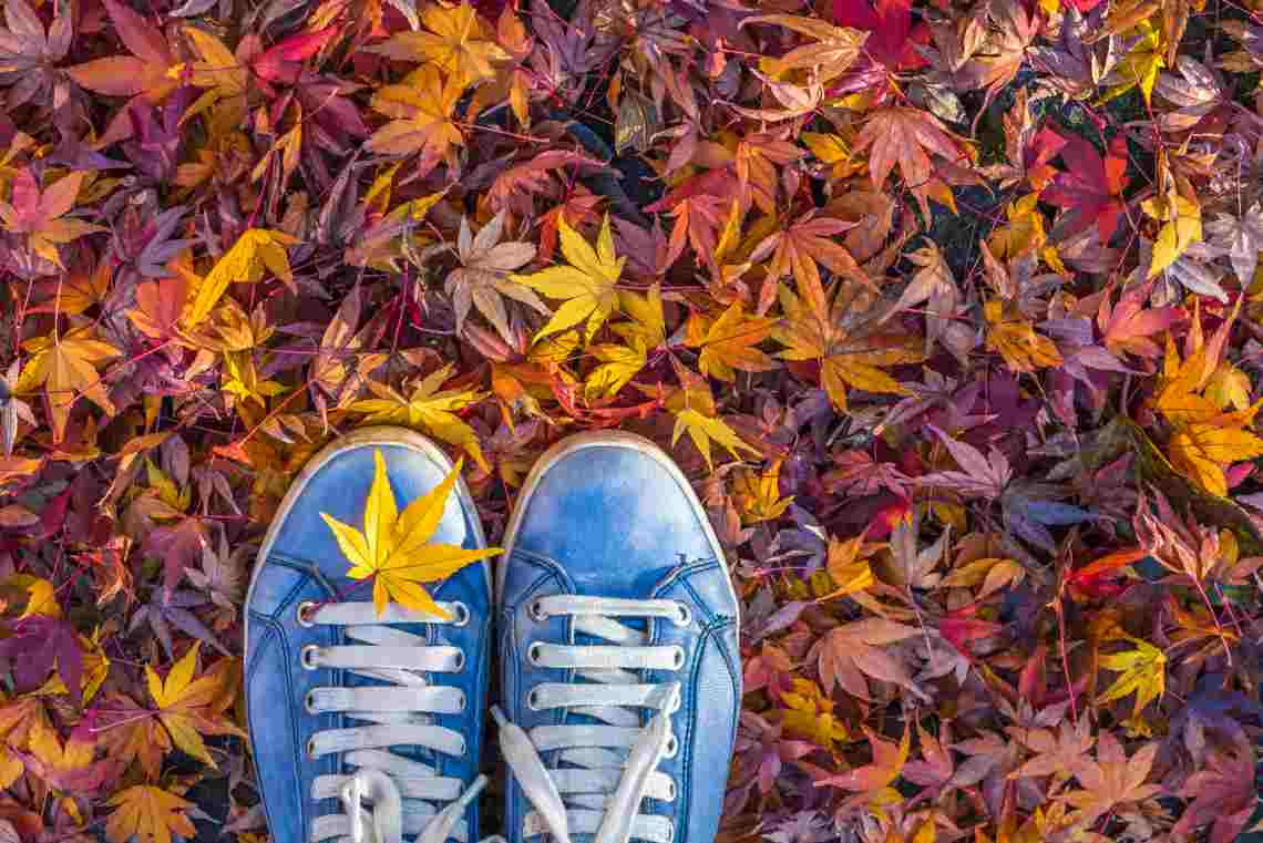 Тест от LifeGid – узнайте себя по любви к осени