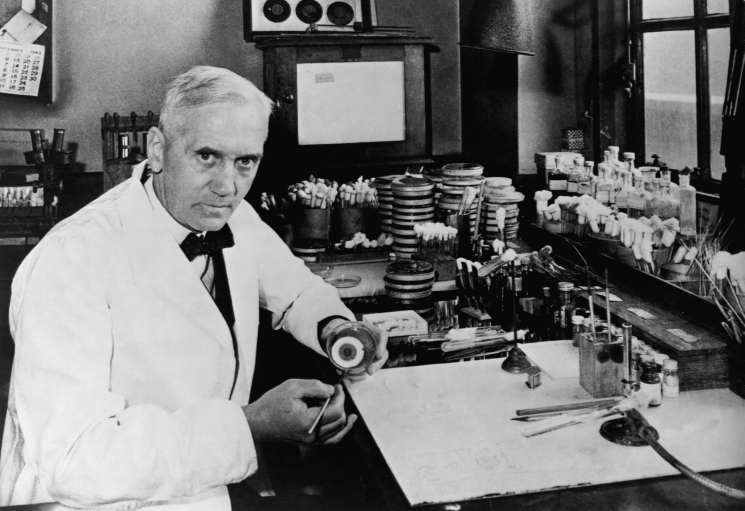 фишки дня - 13 сентября, Александр Флеминг, открытие пенициллина