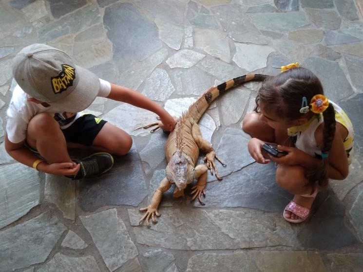 аквариум на Крите, отдых на Крите с детьми