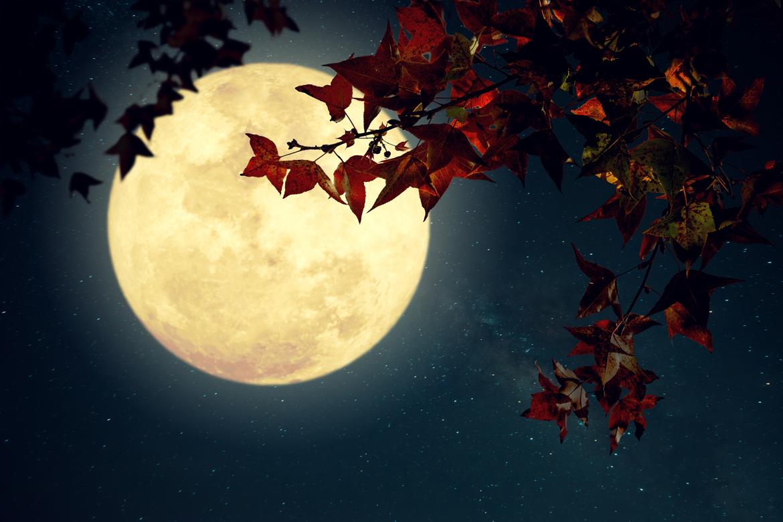 Магнитные бури и лунный календарь — с 13 по 19 сентября